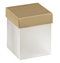 Embalagem em PVC com tampa em cartão